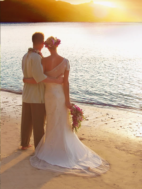 turtle island wedding
