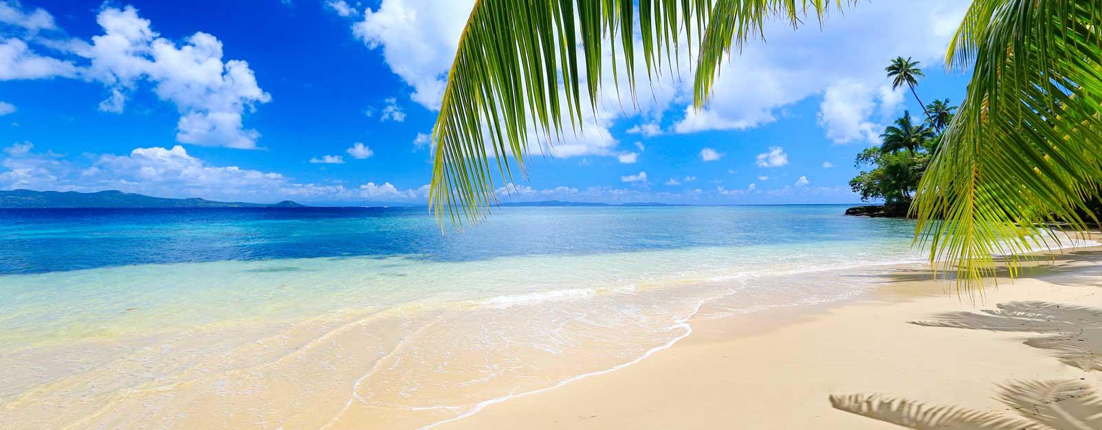 Fiji Matangi beach